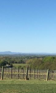 The View at Raffaldini Vineyards