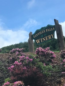 Linville Falls Winery - Linville Falls, NC