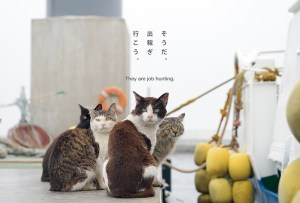 postcard-006