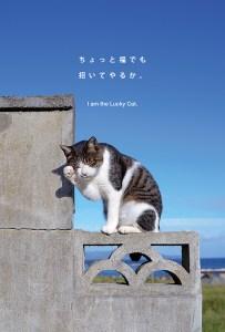 postcard-007