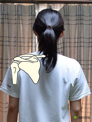 肩痛ネストラ式1