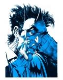<h5>Blue and White Batman</h5>