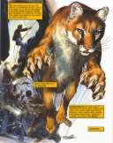 <h5>Lion</h5>