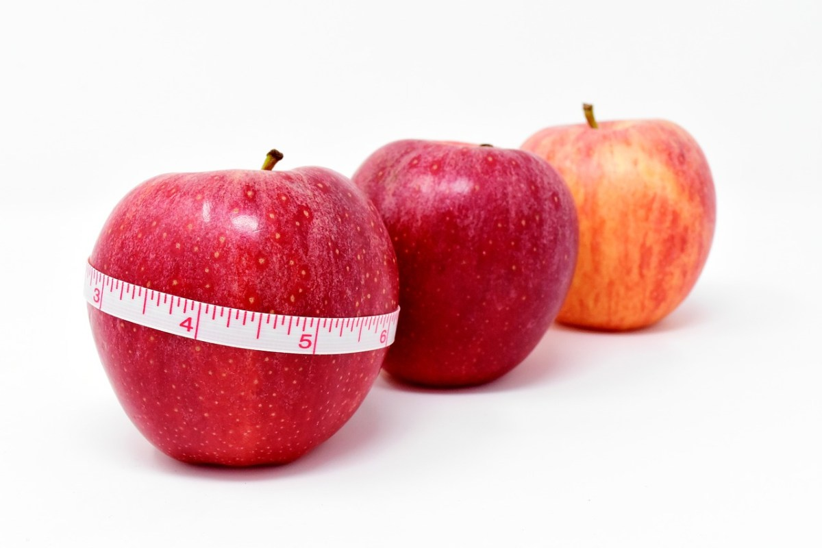 The Top 3 Diet Plans for Weight Loss (& Control)