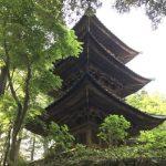 Saimyoji Temple in Mashiko (益子町の西明寺)(Photo: Angus)