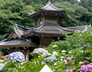 Rokkakudo and Ohira Hydrangea Festival (Tochigi Oohira Ajisai Matsuri)