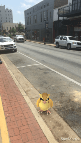 Parallel parking for a Pidgey