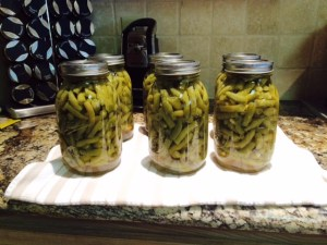 6 Quarts Green Beans
