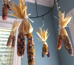 Drying Glass Gem Corn
