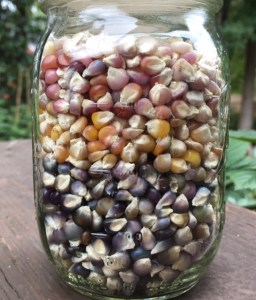 Glass Gem Kernels