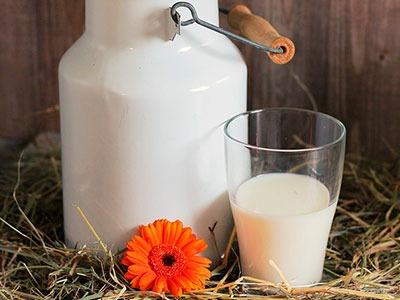 Leche de burra: Donkey's milk