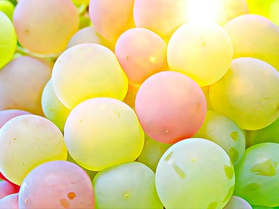 Aceite de semilla de Uva: Vitis Vinifera (Grape) Seed Oil