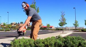 commercial-hedge-trimming