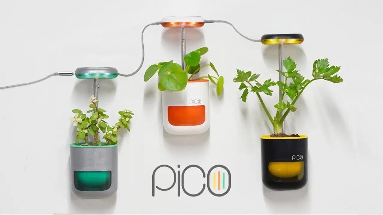 pico-planter