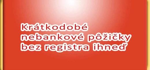 Krátkodobé nebankové pôžičky bez registra ihneď