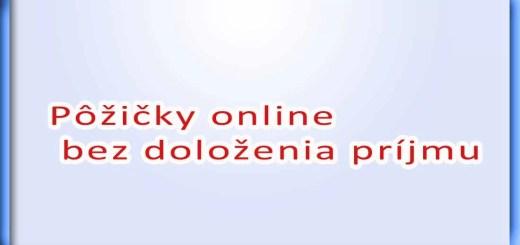 Pôžičky online bez doloženia príjmu