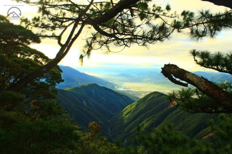 View along the trail of Mt, Kemalugong