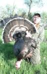 Merriam's Turkey Hunts - 855-473-2875