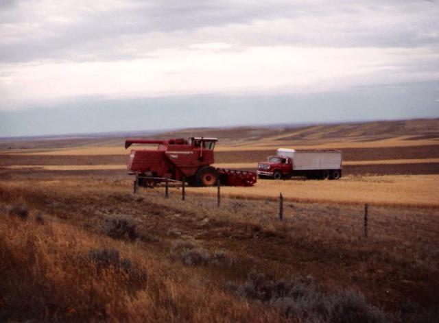 1983-3-0011