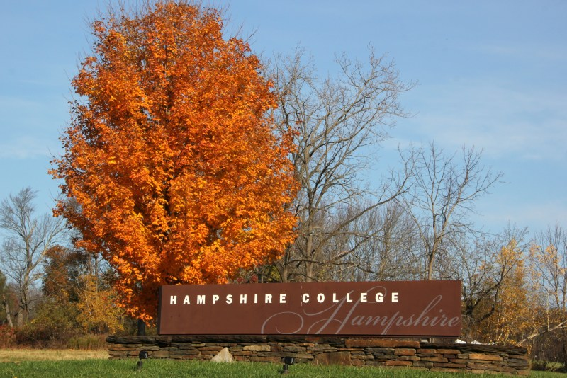 Tree with Hampshire College sign