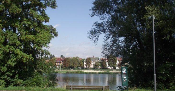 Die-Stadtredaktion: Wie Kommt Die Stadt An Den Fluss?
