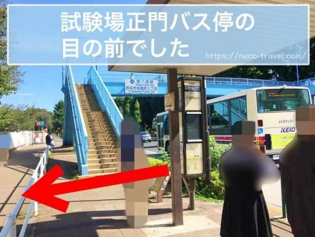 試験場正門バス停