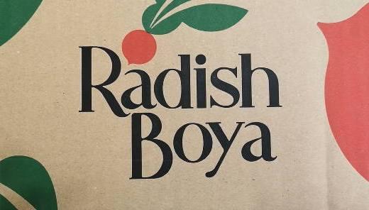 【らでぃっしゅぼーや】おまかせ野菜ボックスおためしセットの中身を動画でご紹介!
