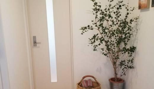 玄関に網戸を付けたい! 『マグネット開閉式 網戸カーテン』をご紹介いたします。