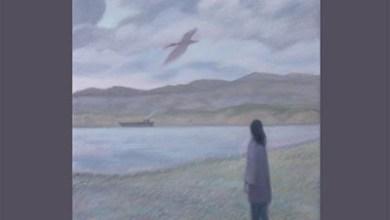 Photo of LEILA ABDUL RAUF (USA) «Cold and cloud» LP 2013 (Pesanta Urfolk)