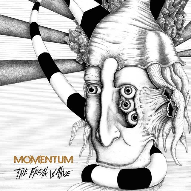 mometum - the fraks - web