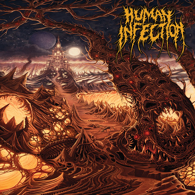 human infection - curvatures - web