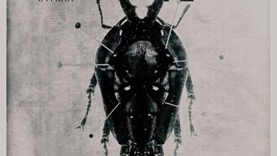 Photo of [CRÍTICAS] GREY SEASON (DEU) «Invidia» CD 2015 (Noizzgate Records)
