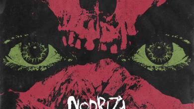 Photo of [NOTICIAS] Los valencianos NODRIZA desvelan la portada de su próximo trabajo