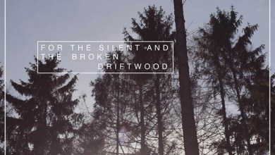 Photo of [CRÍTICAS] DRIFTWOOD (DEU) «For the silent and the broken» CD 2016 (Autoeditado)