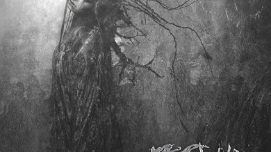Photo of [CRÍTICAS] THE CRAWLING (GBR) «In light of dark days» MCD 2015 (Grindscene records)