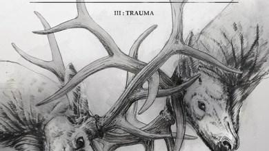Photo of [CRÍTICAS] HARAKIRI FOR THE SKY (AUT) «III – Trauma» CD 2016 (Art of propaganda)