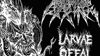 Photo of [CRÍTICAS] ABHOMINE (USA) «Larvae Offal Swine» CD 2016 (Hells Headbangers / Osmose Productions)