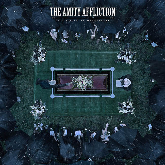 the amity - could - web