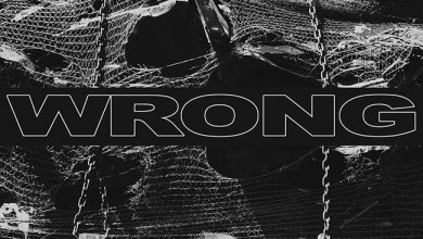Photo of [CRÍTICAS] WRONG (USA) «Wrong» CD 2016 (Relapse Records)