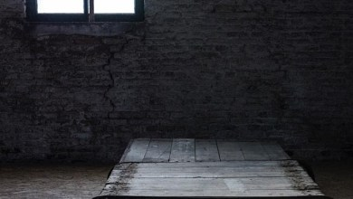 Photo of CHARNIA (BEL) «Het laatse licht» CD 2017 (Consouling Sounds)