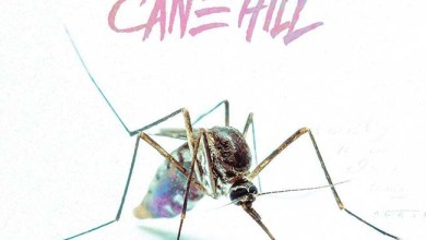 Photo of CANE HILL (USA) «Too far gone» CD 2018 (Rise Records)