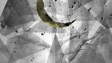 Photo of L'HOMME ABSURDE (RUS) «Sleepless» CD 2018 (Autoeditado)