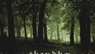 Photo of THEUDHO (BEL) «De roep van het woud» CD 2018 (Heidens Hart Records)
