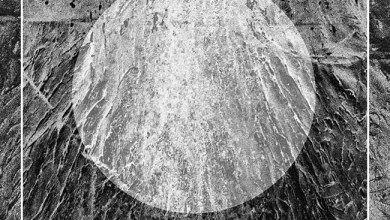 Photo of TIME LURKER (FRA) / CEPHEIDE (FRA) «Split» SPLIT CD 2019 (Les Acteurs de L'ombre Productions)