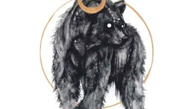 Photo of HOLDEN (USA) «Ursa Minor»