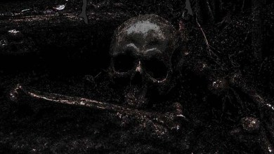 Photo of NECROCHAOS (DEU) «Crawling Through Cadavers»