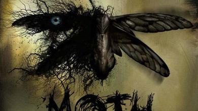 Photo of MOTH (COL) «Moth»