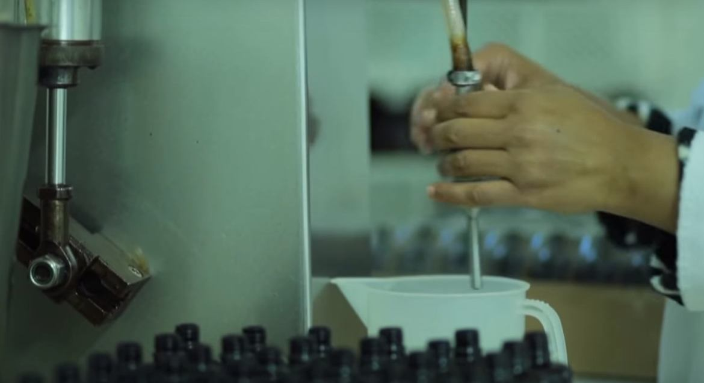 アルガンオイルの製造方法 - Nectarome ネクタローム 日本公式サイト