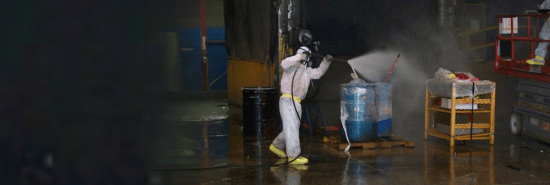Chicago mold remediation