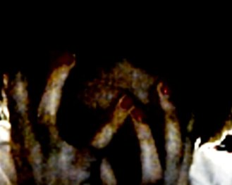 scary_fingers_by_nuraskye-d4cw38z